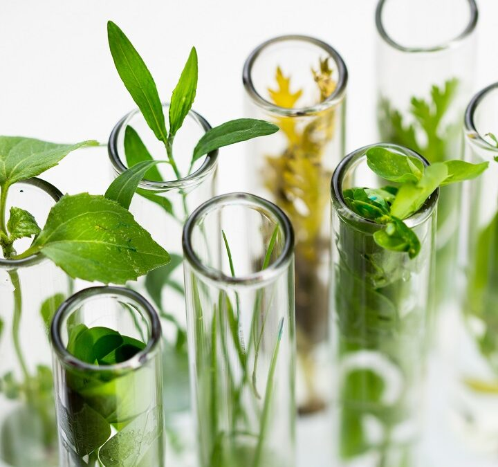 The economics of green chemistry: How green chemistry is pro-profit and pro-planet